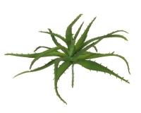 Aloe Mini Cm 12 Verde Effetto Real Touch
