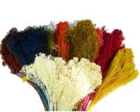 Broom Bloom Fiori Secchi Da 100 Gr Composizioni Addobbi Floreali