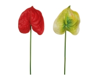 Anthurium Elite Lattice Real Touch 66 Cm Decorazione Fioristi