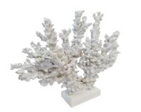 Corallo Resina Bianco 26x2x21,5 Linea Mare Decorazione