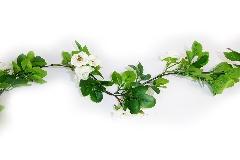 Ghirlanda Rose Multiflora Cm 180 Fiori Artificiali