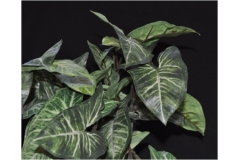 Pianta Artificiale Bush Cadente Foglie Nephthytis 40 Cm
