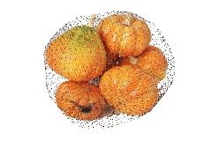 Pz 6 Zucche Arancio Misura Assortita Decorazioni Halloween