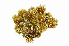 Gr 500 Pigne Naturali Laccate Oro Uso Decorativo