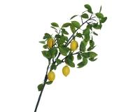 Tralcio Limoni Gigante 120 Cm 5 Frutti Decorazione Addobbi