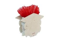 Bomboniere Laurea Gufo In Legno 7x10 Cm Con Sacchetto E Tulle Rosso
