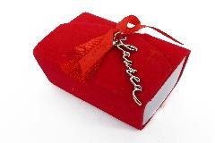 Bomboniera Libro Rosso In Velluto Con Ciondolo Scritta Laurea In Metallo